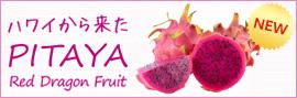 マナオラナ|ピタヤを使用した新商品